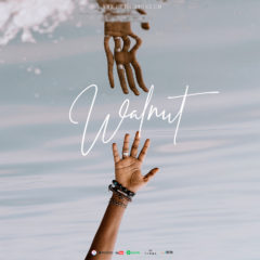 Alvin Brown Beats – Walnut (2o18)
